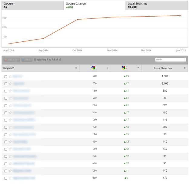 Internet Marketing Case Study Ranking Changes
